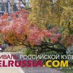«Аптекарский огород» на один день станет центром российской культуры