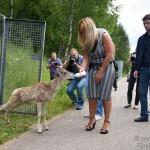 Бэби-бум в Центре воспроизводства редких видов животных Московского зоопарка