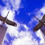 ФЕСТИВАЛЬ НАРОДНОГО ЕДИНСТВА  «БЕЛЫЕ ЖУРАВЛИ РОССИИ»