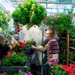 К даче готовы: на ВДНХ ЭКСПО пройдет выставка  «Обнови свой сад»