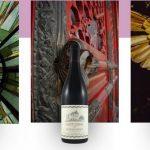 WineBeMine: новый способ выбирать вино