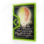 «Истории от разных полушарий мозга»: Политехнический музей приглашает на презентацию научно-популярной книги 18+